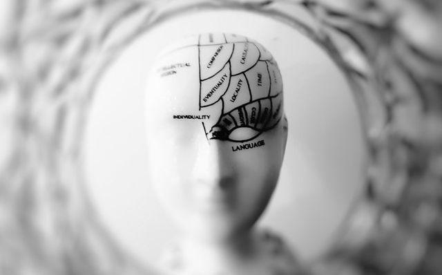 Image d'un mannequin sur lequel est tracé un cerveau compartimenté selon différentes capacités motrices.