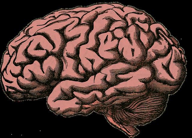 Testez votre cerveau avec Lockout Game.